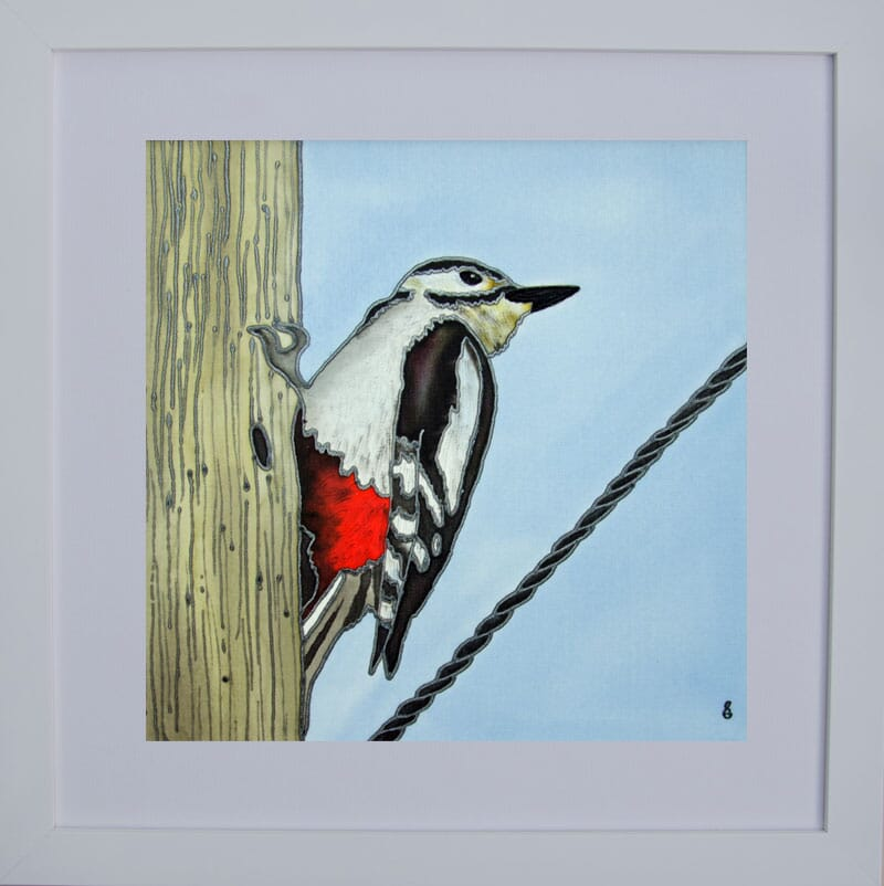 February-Woodpecker-Framed-For-Web
