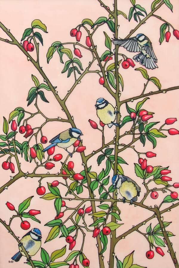 Blue Tits and Rosehips